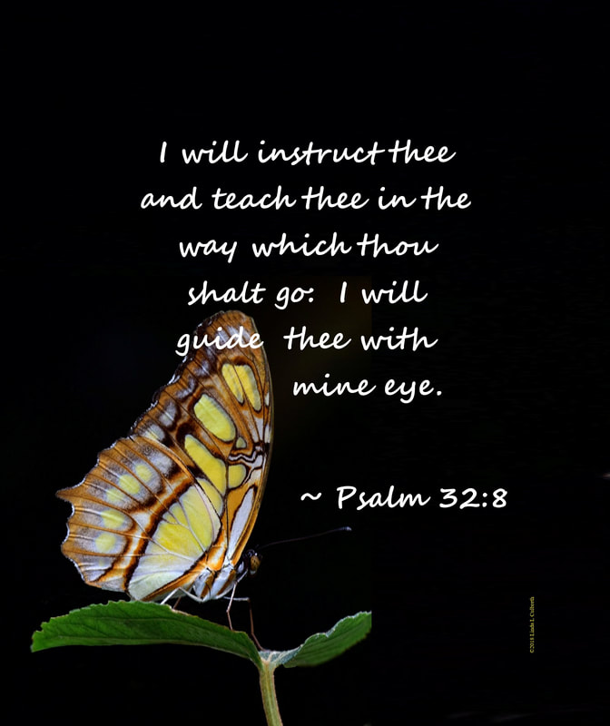 Butterfly with Psalm 32: 8